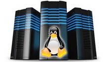 linux-web-hosting-home