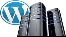Tips to Choose the Best Hosting for WordPress