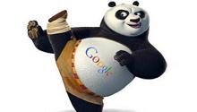 What is Google Panda