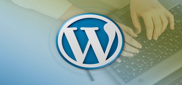 wordpress plugin update