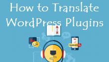 translate wp plugins